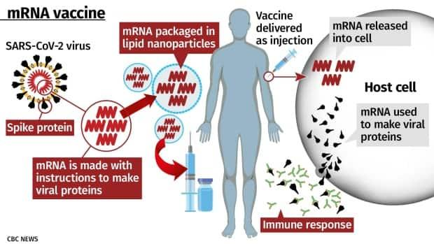 Vaccine Shedding: The Harm For Those Who Choose NOT To Be Vaccinated